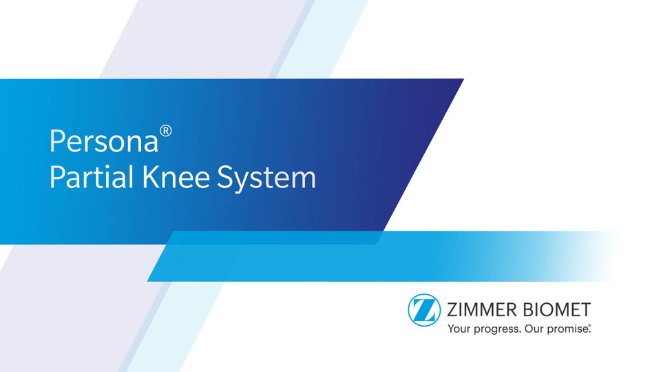 Persona 174 Partial Knee System