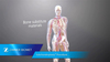 AccuFill® Bone Substitute Material for the Subchondroplasty® Procedure Animation